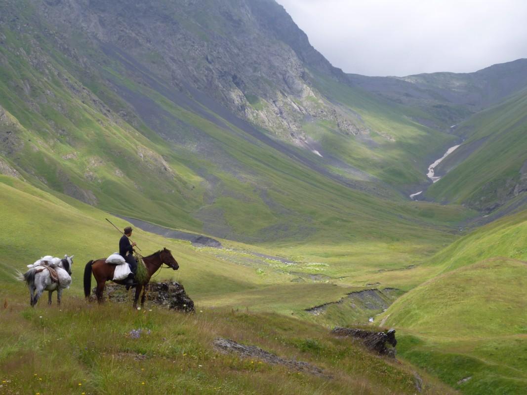 Paard in de heuvels van Georgië
