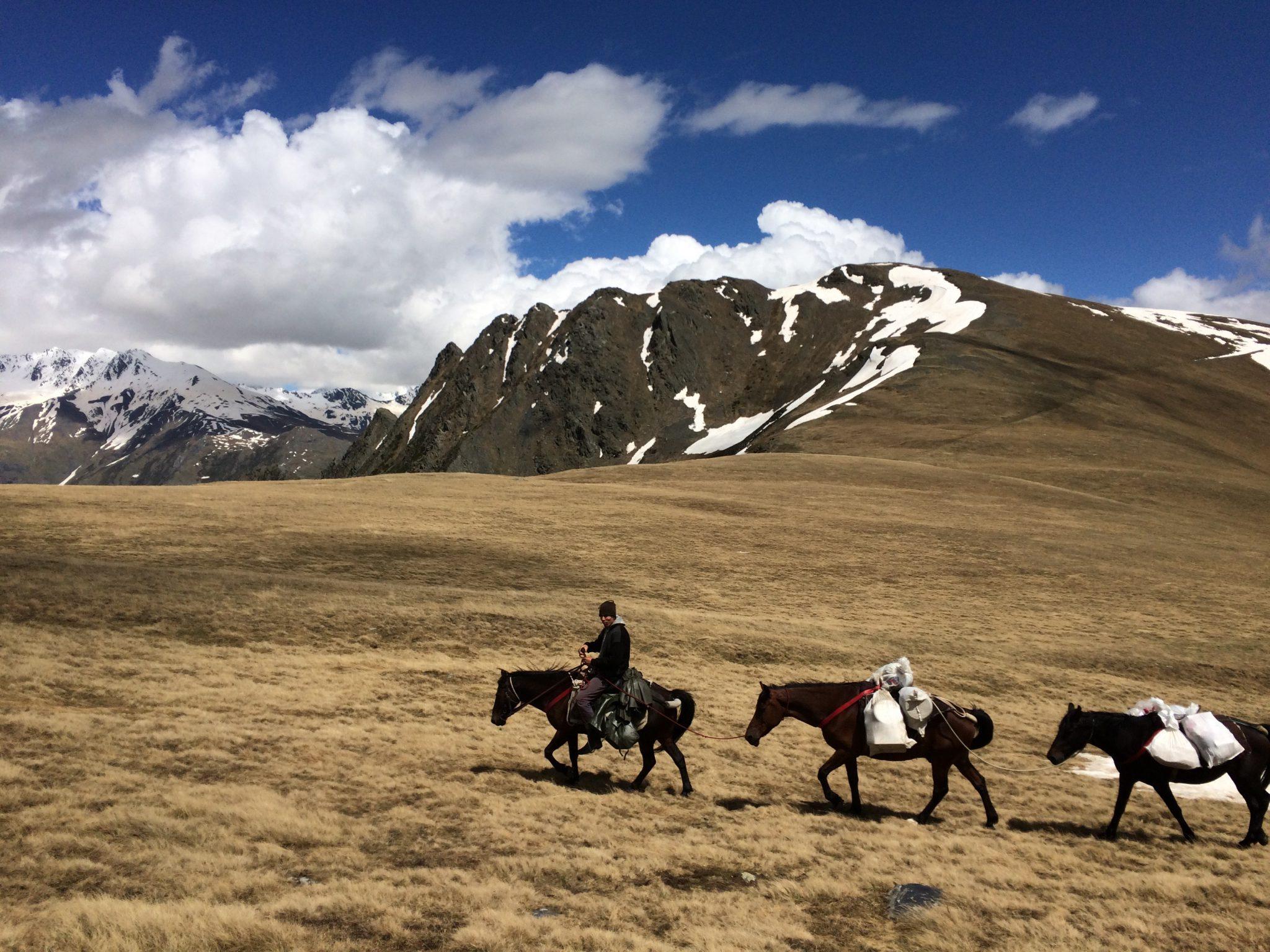 Trektocht te paard in Georgië