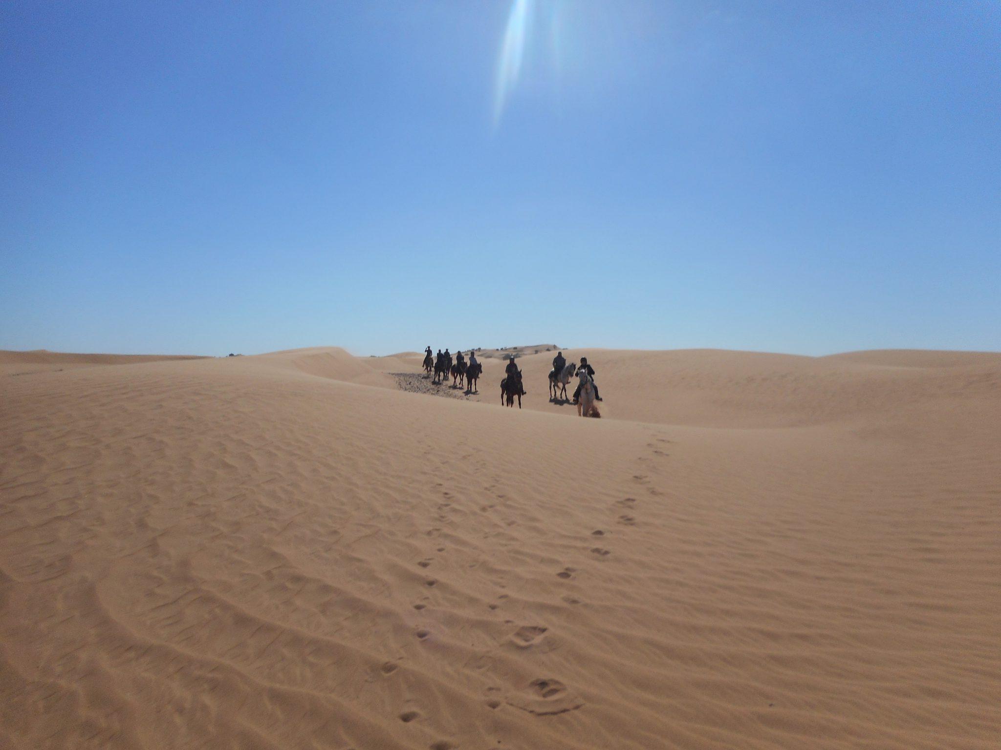 Paardrijden in de woestijn in Marokko
