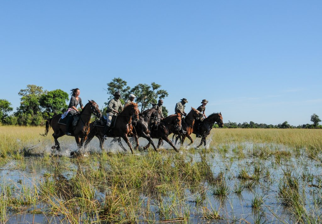 Paardrijden in de Okavango Delta Botswana