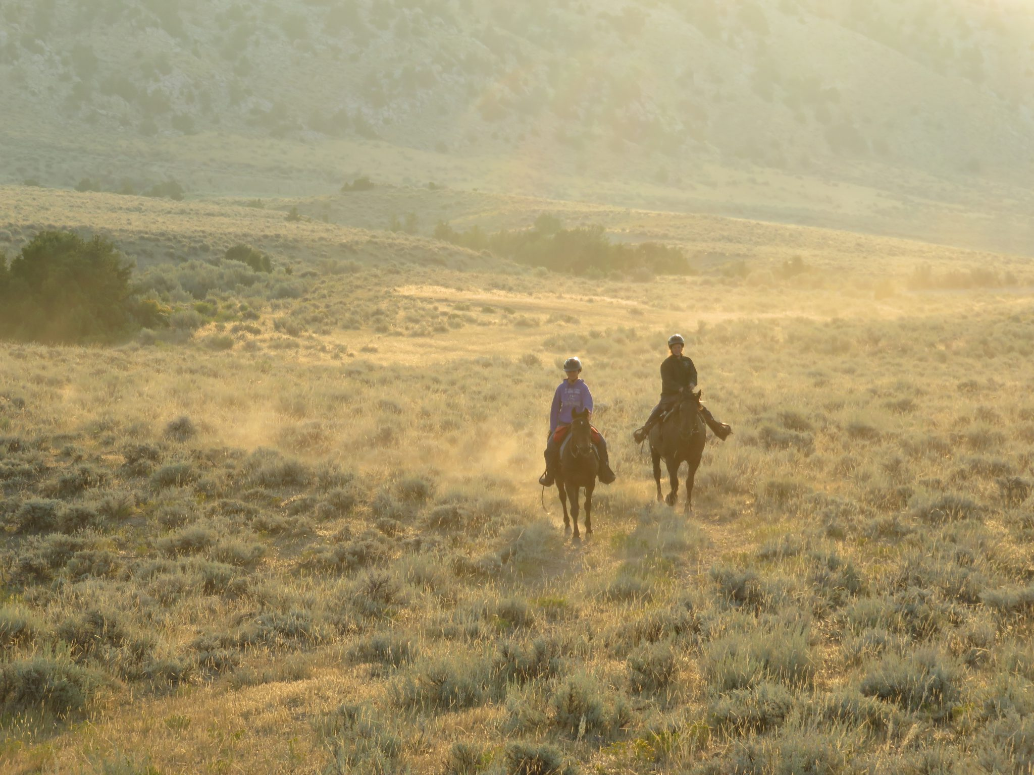 Westernrijden op ranch in Amerika