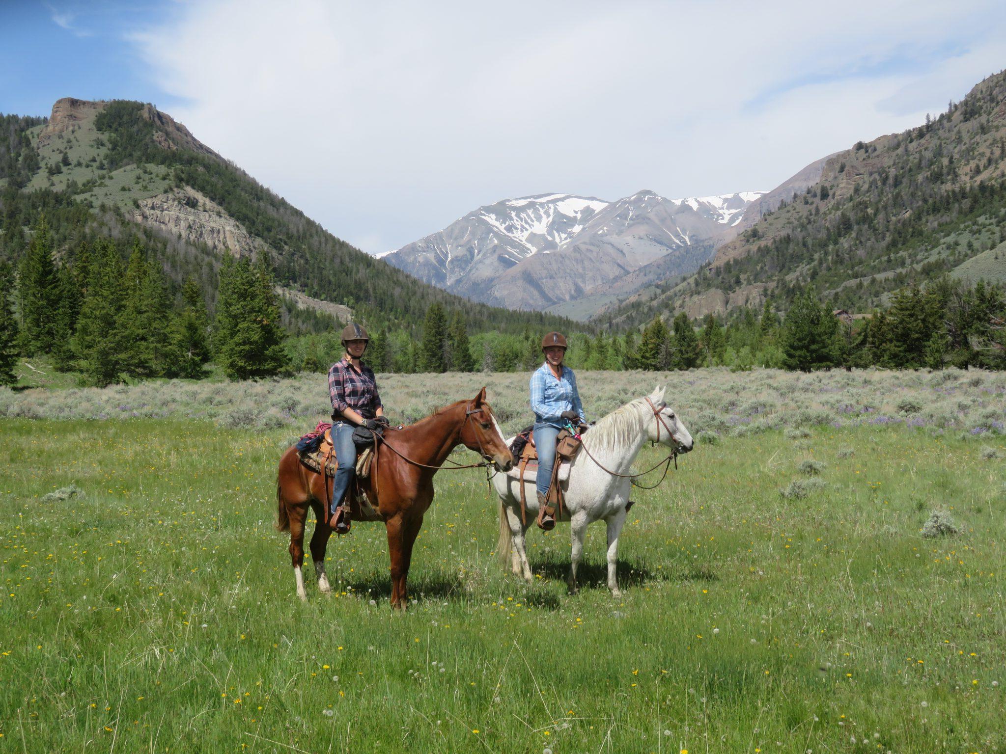 Paarden en ruiters op ranchvakantie in Wyoming