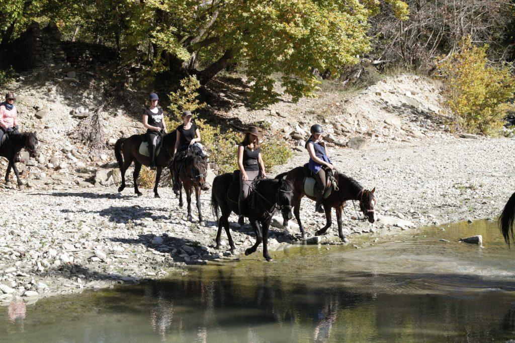 Met paarden in het water op paardrijvakantie