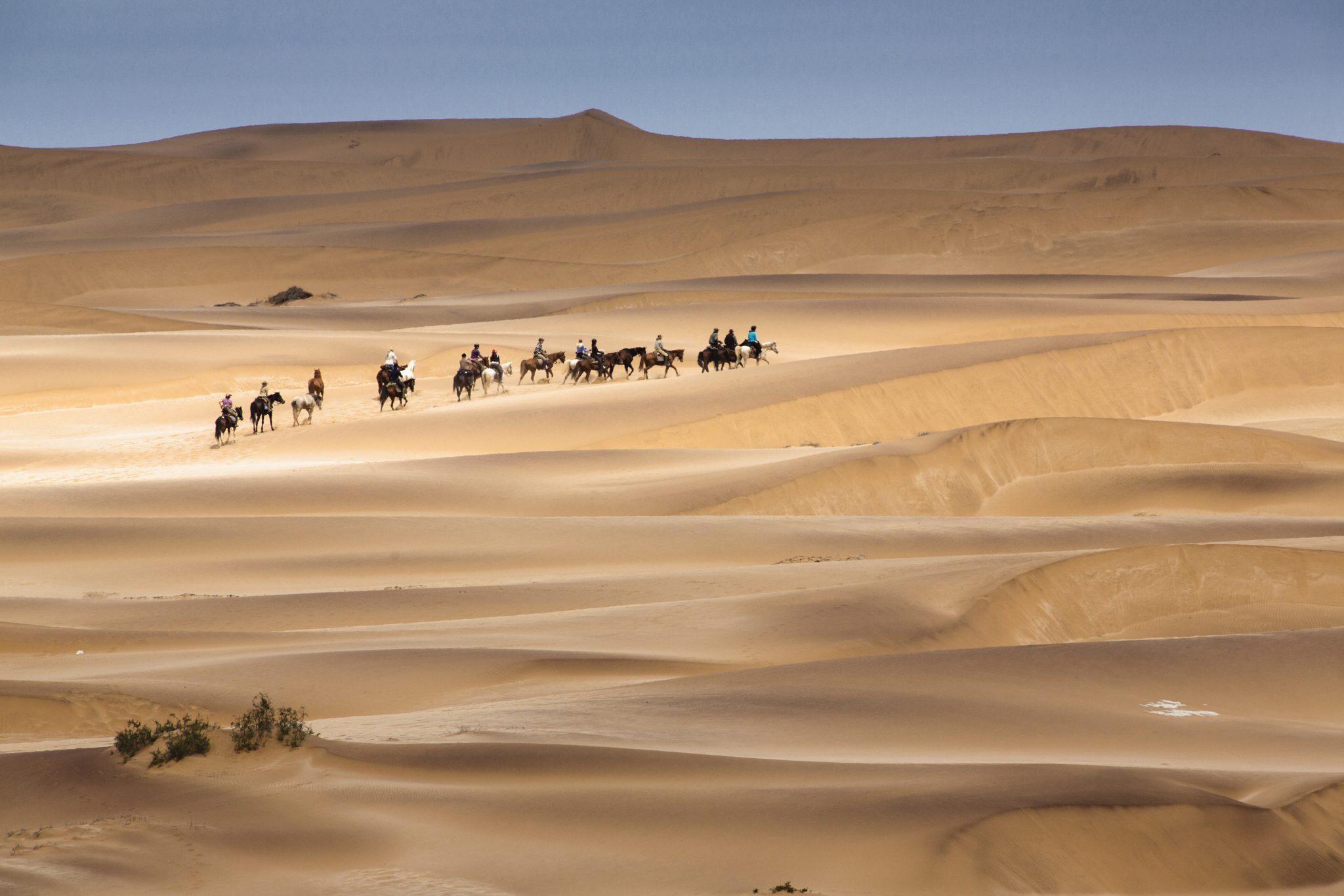 Paardrijden in de woestijn in Namibië