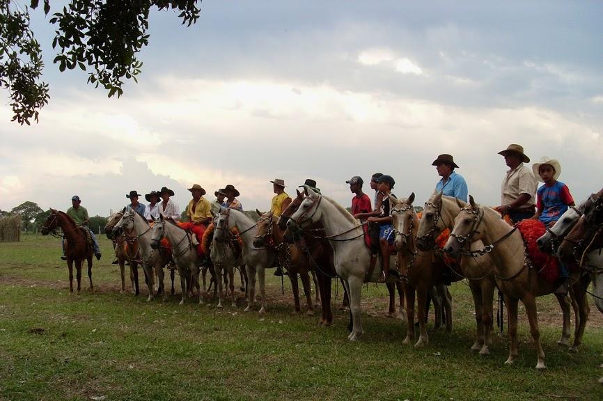 Paarden op een ruitervakantie in Brazilië