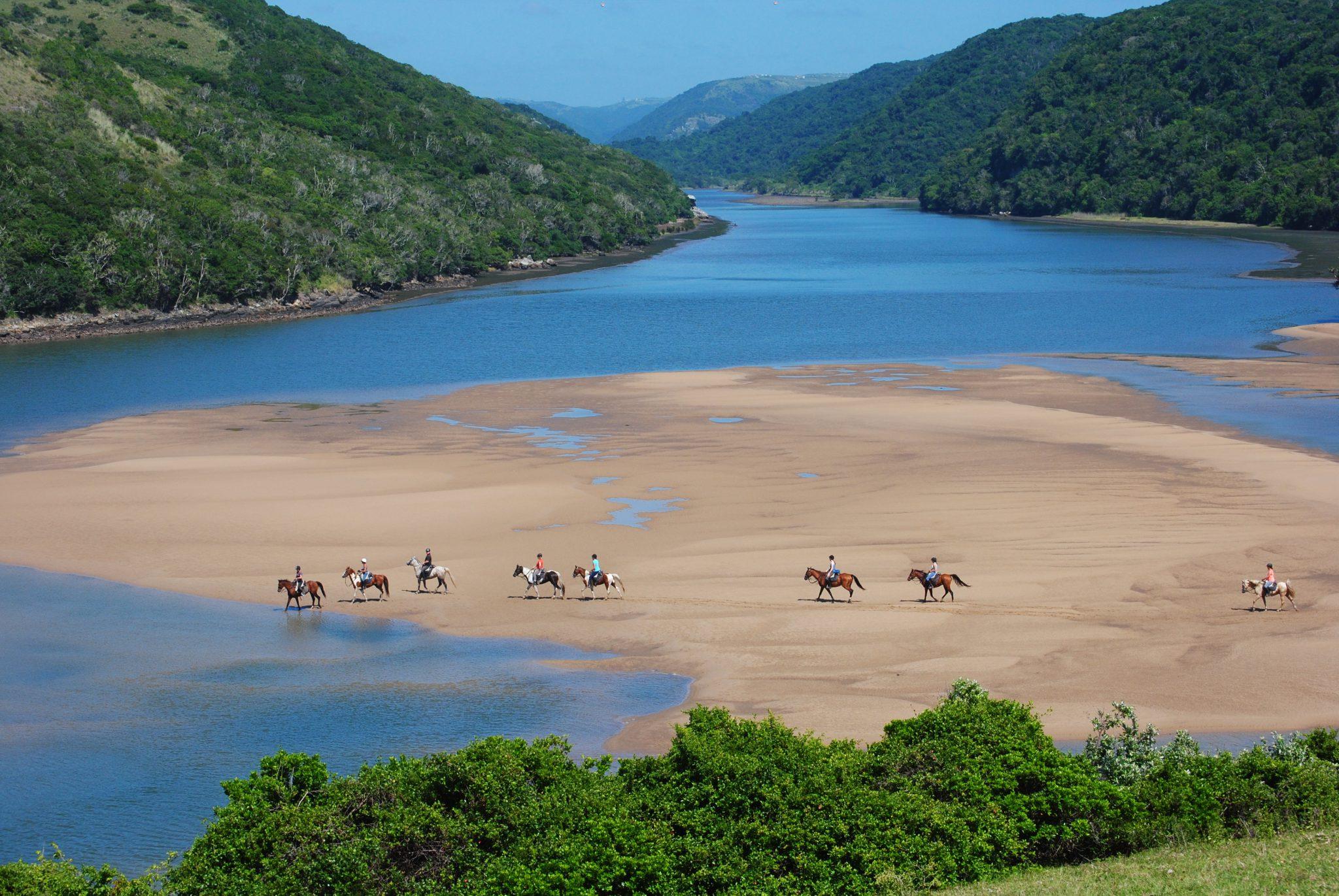 Paarden en ruiters bij rivier in Zuid-Afrika