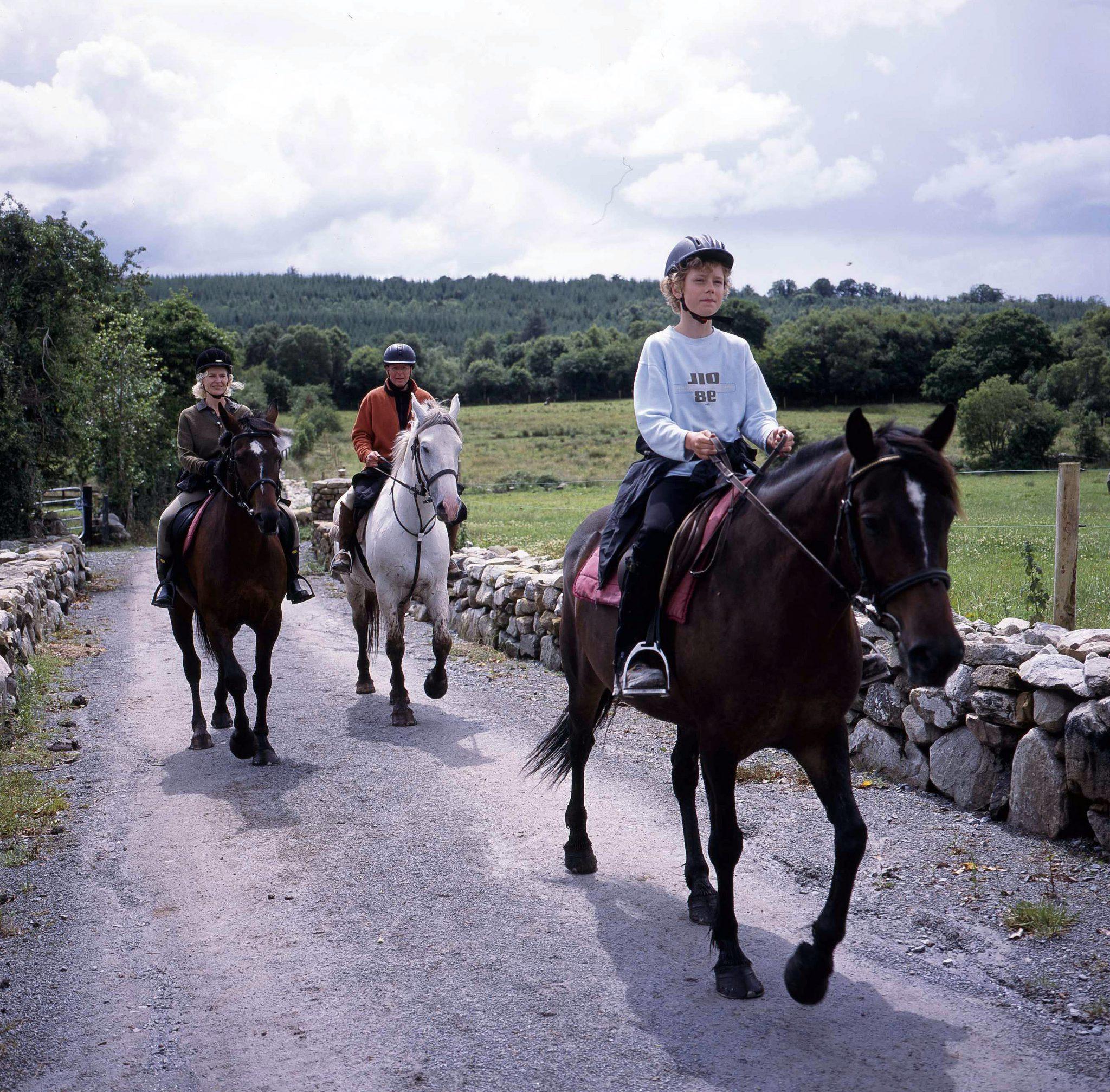 Kinderen met paarden in Ierland