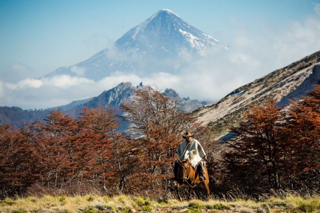 Paard in de bergen