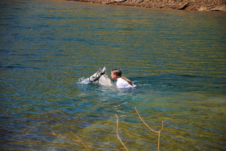 Zwemmen met paard tijdens een endurance rit