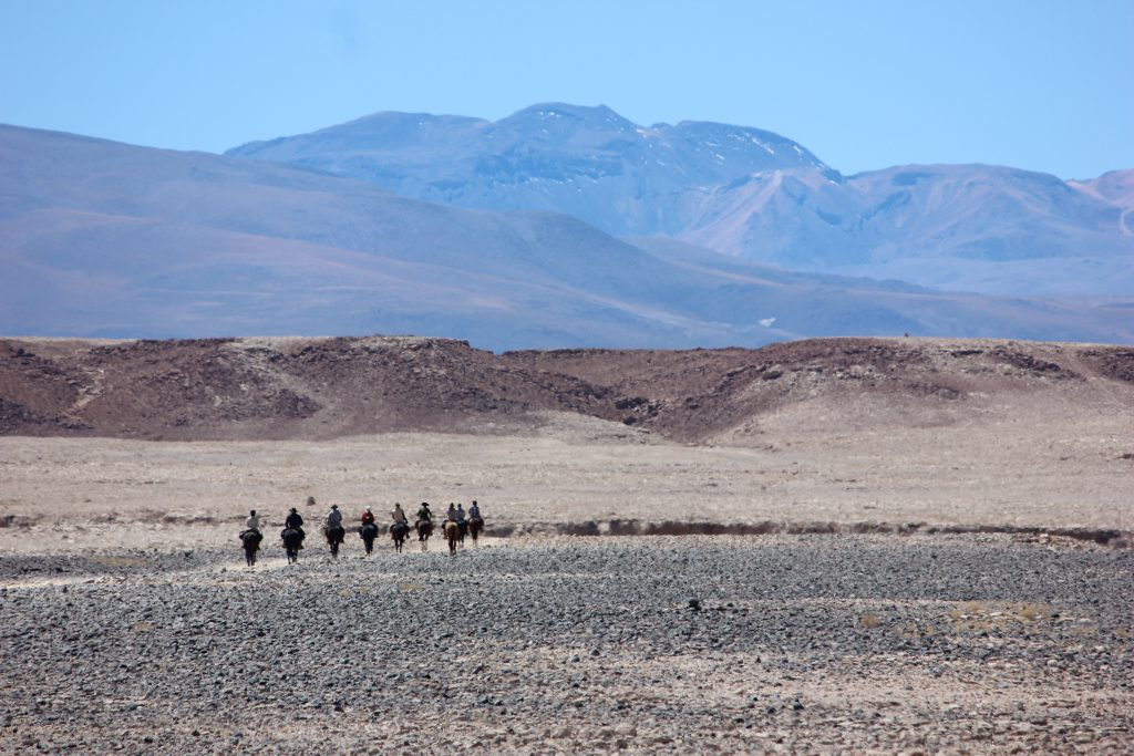 Ruiters op vakantie in de woestijn Chili