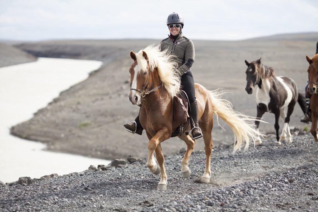 Paardrijvakantie op IJslanders