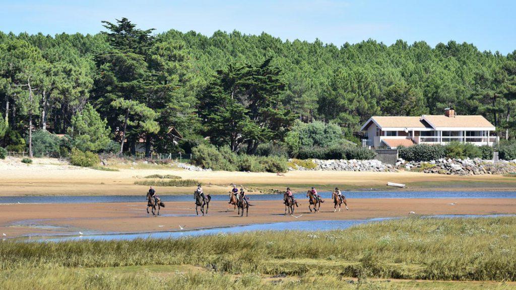Paardrijvakantie in Frankrijk