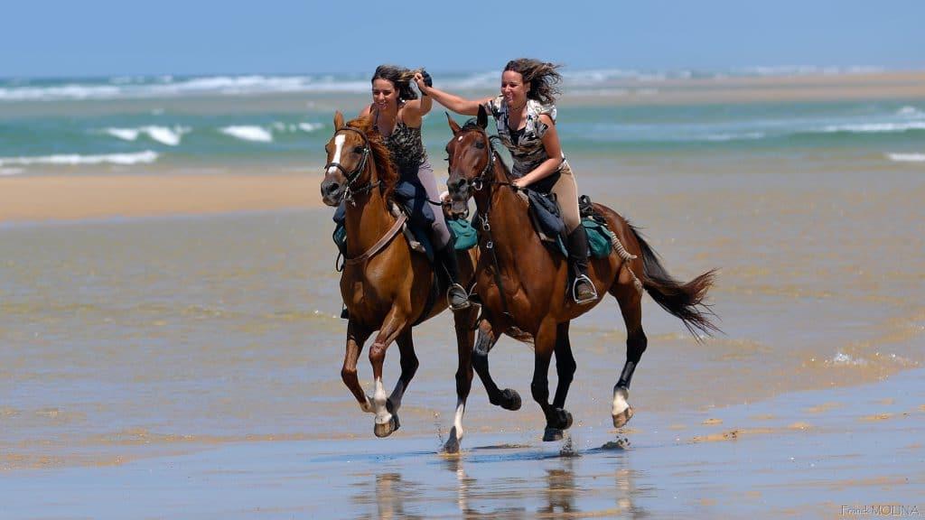 Galopperen op het strand tijdens paardrijvakantie in Frankrijk