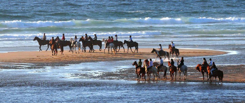 Groep ruiters op paardrijvakantie in Frankrijk