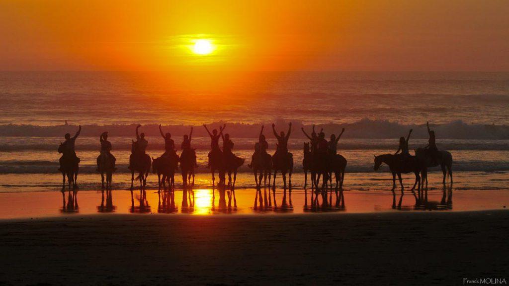 Groep ruiters op het strand bij zonsondergang