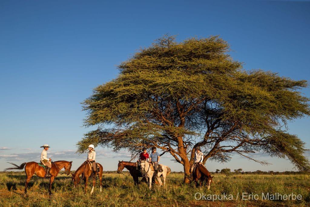 Paardrijden in Afrika
