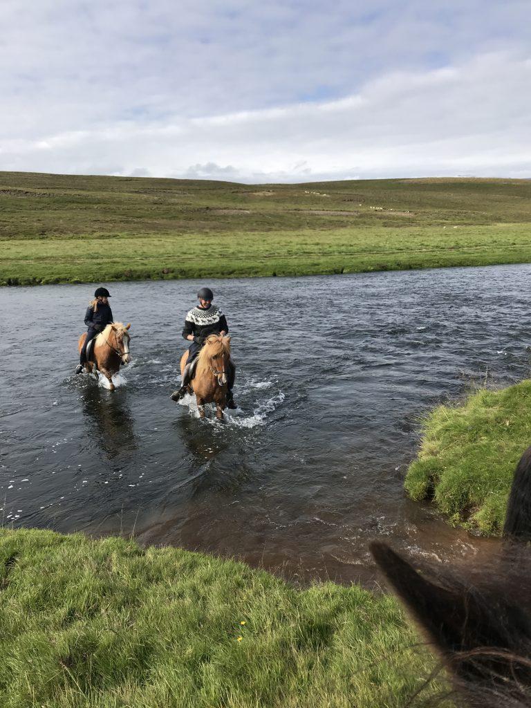 Rivier oversteken met paarden in IJsland